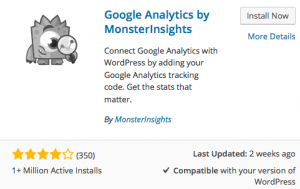 Google Analytics Monster Insights