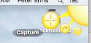 screen capture jing-sun-capture