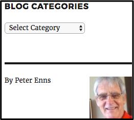 WordPress author